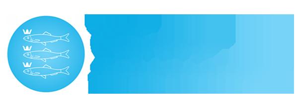 Logo-Stichting-Omroep-Scheveningen-PNG-e1498422282453-1
